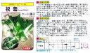 【その他の菜類】祝蕾〔大和農園種苗販売部〕/コート50粒