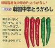 【トウガラシ】韓国中辛とうがらし〔一代交配〕/小袋