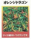 【世界の果菜】オレンジドラゴン/小袋