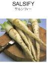 【世界の根菜】サルシフィー/小袋