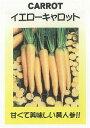 【世界の根菜】イエローキャロット/小袋