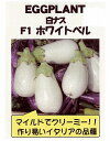 【世界の果菜】ナス 白ナス F1ホワイトベル/小袋