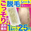 脱毛ワックス シート【シートタイプで簡単!脱毛ワックス 40...