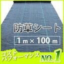 【2本セット】 防草シート 巾1m×長さ100m