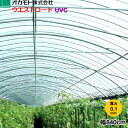 \P7倍 2/9 20:00 - 2/16 1:59 要エントリー/ 農業用POフィルム 塗布型 ウエストコートUVC 厚さ0.1mm 幅840cm 長さ(m)は数量で指定
