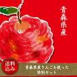 送料込★青森県産りんごを使用した特別セット【出荷日限定】