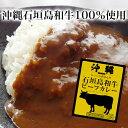 カレー 沖縄石垣島和牛ビーフカレー 中辛 レトルトカレー 常温保存 非常食 備蓄