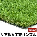 【送料無料】人工芝 リアル ジョイントマット 【サンプル】 芝生 人工芝生 天然芝 ベランダ マット