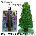 (ママ割でP5倍) マジッククリスマスツリーシリーズ『マジックツリー ラージタイプ』20時間で育つ不思議なクリスマスツリーマジックスノー クラフトツリー