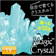 【しゃべくり007で紹介!】マジッククリスタル 10日で育つ不思議なクリスタル Magic Crystal クリスタル栽培キット 手作りキット 世界で一つだけのクリスタル