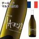 白ワイン 辛口 テール・ド・マルヌ 2013 ソーヴィニヨン・ブラン フランスロワール 750ml 自社輸入