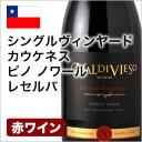 赤ワイン シングルヴィンヤード・カウケネス・ピノ・ノワール・レセルバ 2012 フルボディ ピノ・ノワール チリワイン 750ml