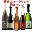 贅沢スパークリングワインセット5本セットバラエティ豊かなスパークリングワインを堪能シャンパン製法カヴァランブルスコ入り