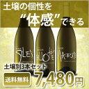 ワインセット 送料無料 土壌別白ワインセット 3本セット土壌別に育てられたソーヴィニヨン・ブランを飲み比べし味わいの違い体感
