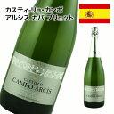 スパークリングワイン 辛口 スペイン バレンシア カヴァ