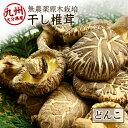 乾燥しいたけ 乾燥椎茸 どんこ 120g