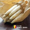 ホワイトアスパラガス  ドイツ産 500g【金曜発送】ドイツの春の国民食