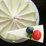 ニューヨークチーズケーキ プレーン(冷凍)