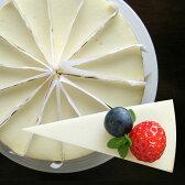 ニューヨークチーズケーキ プレーン(冷凍)直径20cm/送料無料 NYチーズケーキ ケーキ バースデーケーキ 誕生日 ギフト プレゼント スイーツ お中元