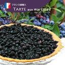 ブルーベリーのタルト フランス産「タルト