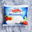 フレッシュ チーズ モッァレラ ディ バッカ 125g イタリア産 ガルバーニ 毎週火・木曜日発送