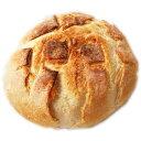 石窯焼き ブール 480g(冷凍)お試しパック フランスパン 丸いパン