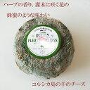 羊乳 熟成フレッシュタイプ チーズ ブラン デュ マキ 約250g 毎週水・金曜日発送