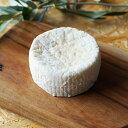 フレッシュ チーズ リコッタサラータ 約100g 国産 4週間熟成