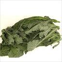 イタリアの野菜 「不定貫」 カーボロ・ネロ(黒キャベツ) 10月〜4月