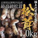 【終了間近】松茸 まつたけ 国産 開き(ひらき)1kg 10〜20本 マツタケ 長野 産地直送