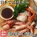 まるずわい蟹 肩脚肉(1kg) DEEP SEA RED CRAB ズワイ かに カニ