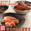 お歳暮 福さ屋 明太子 と鰻蒲焼のセット【送料無料】ギフト