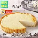 クーポン ホワイト チーズアントルメ