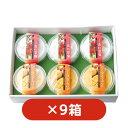 【まとめてお得】果肉入りとろける杏仁豆腐・マンゴープリン6個セット×9