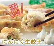 ショッピングギョウザ 【にんにく生餃子 60個】ニンニク多めが好きな方にはたまらない