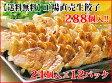 ショッピングギョウザ 【送料無料】お徳用 工場直売生餃子 6セット(24個×12パック)288個入り!