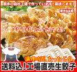 ショッピング餃子 [餃子の王国]【送料込】工場直売生餃子 72個!(24個×3トレー)と、餃子のタレ10袋国産野菜に、九州産豚肉100%使用し熊本の自社工場で製造(安心素材で、パリパリ焼ける餃子です!)