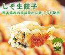 [餃子の王国]【しそ生餃子 90個】土づくりからこだわった中原温室の風味豊かなしそを使用