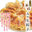 [餃子の王国]米粉入り生餃子(17g×15個)皮はもっちり!パリパリ羽も香ばしい!