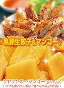 【送料込2,980円】黒豚生餃子と冷凍「マンゴー1kg」セット