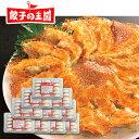 【送料無料】メガ盛り!黒豚生餃子150個!約20人前(15個...