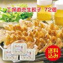 [餃子の王国]【送料込】工場直売生餃子 72個!(24個×3パック)国産野菜に、九州産豚
