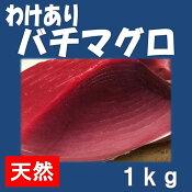 ★三崎産わけありバチ鮪赤身1kg★【ランキング入賞商品】 良質! 漁獲量日本一の美味しいマグロをまさかのお値段で!  なんと1尾30kg級の鮪を1kg〜ご提供! 訳ありの理由は・・・続く