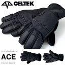 CELTEK セルテック グローブ ACE GLOVE BLACK ブラック メンズ スノーボード スノボ スノー スキー 国内正規品 手袋 【得割40】