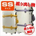 8010-ss_sample