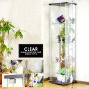 ガラスコレクションボード 幅42.5cm×高160cmスリムハイタイプ コレクションボード 4段 棚板強化ガラス 吸盤式棚 ダボ付き コレクションラック ディスプレイラック キュリオケース ショーケース コレクションケース 飾り棚 ガラスケース