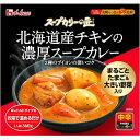 【通販限定/新品/取寄品/代引不可】スープカリーの匠 北海道産チキンの濃厚スープカレー 360g