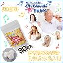 カラオケ 美声 カラオケ名人 喉 声帯 カラオケ上手 ボーカリスト ボーカルスクール ボイスカウンセ