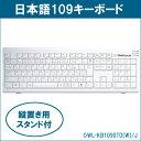キーボード usb ps/2変換コネクタ付 メンブレン 109キー 日本語キーボード Owltech OWL-KB109STD(W)/J