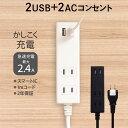 期間限定価格 OAタップ 1m 100cm スマートIC搭載 急速充電2.4A出力対応 USBポート付きUSBポート×2 電源タップ コンセント 宅C